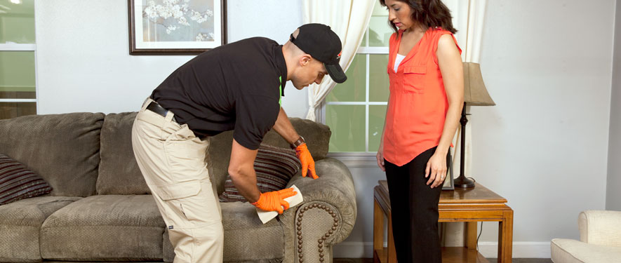 Elm Grove, WI carpet upholstery cleaning